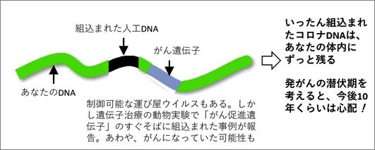 11-6 cancer-mrna-005