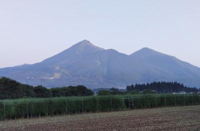 himawari072402.jpg