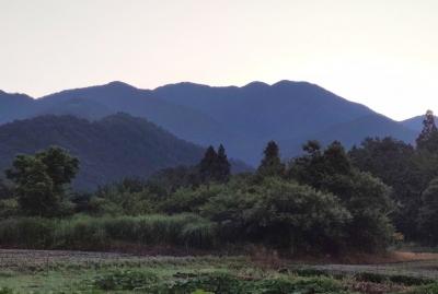 himawari072403.jpg