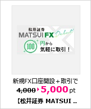 MATSUI FX