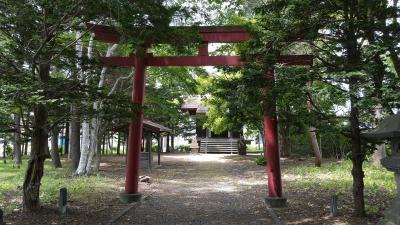 DSC_0594(王子稲荷神社)400