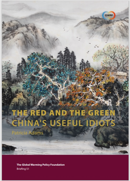 THE RED AND THE GREEN CHINAS USEFUL IDIOTS