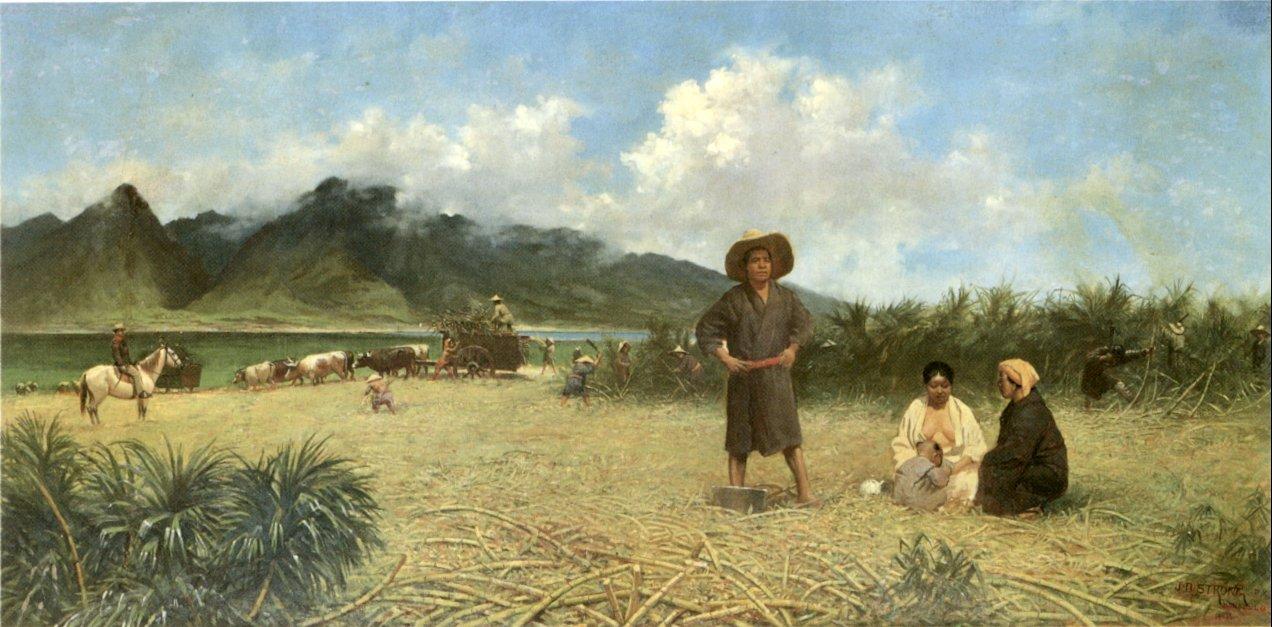 『明治拾八年に於ける布哇(ハワイ)砂糖耕地の状景』 ジョセフ・ドワイト・ストロング