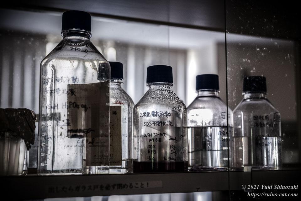 実験台の棚の中に並ぶ電気泳動用の溶液