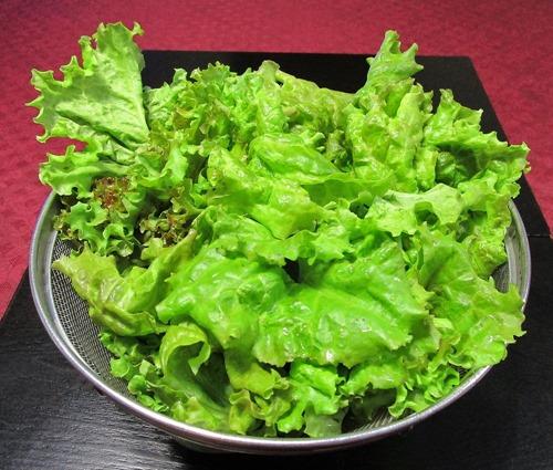 210704leaf-lettuce3