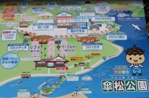 傘松公園3