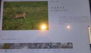 富士世界センター27-1