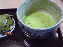 ブログ4抹茶