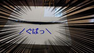 image_202109201331015da.jpg