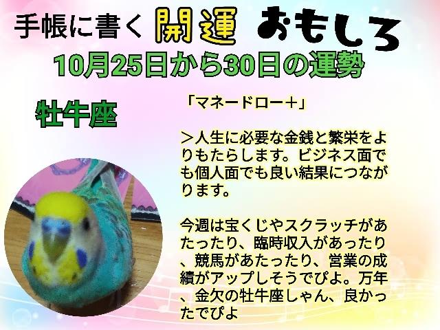 21-10-25-21-42-25-281_deco.jpg