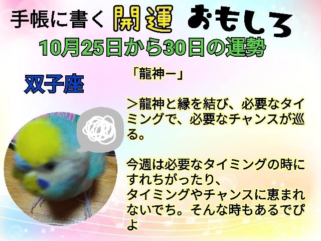 21-10-25-21-48-13-994_deco.jpg