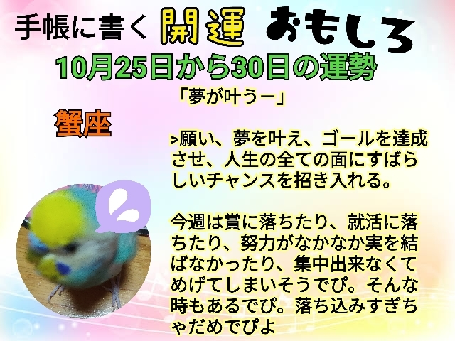 21-10-25-21-52-53-974_deco.jpg