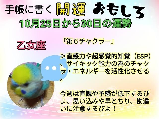 21-10-25-22-02-02-107_deco.jpg