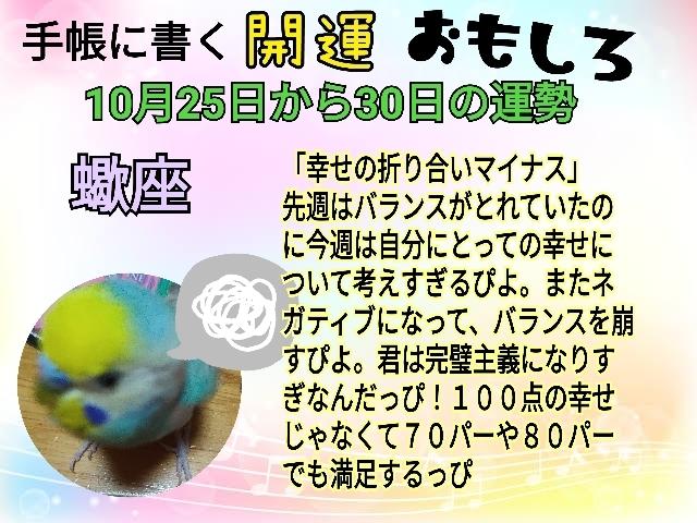 21-10-25-22-19-13-276_deco.jpg