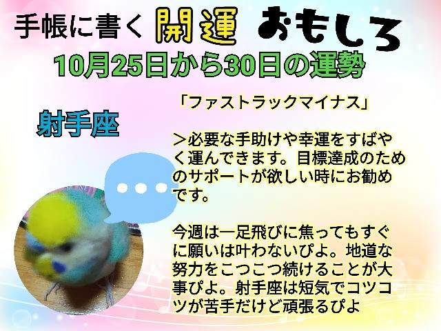 21-10-25-22-23-56-896_deco.jpg