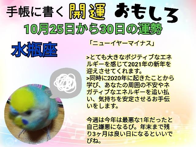 21-10-25-22-42-15-424_deco.jpg