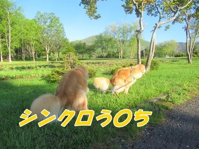 20210601IMG_5990.jpg