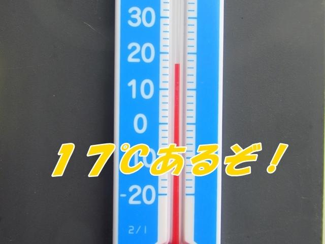 20210618IMG_8045.jpg