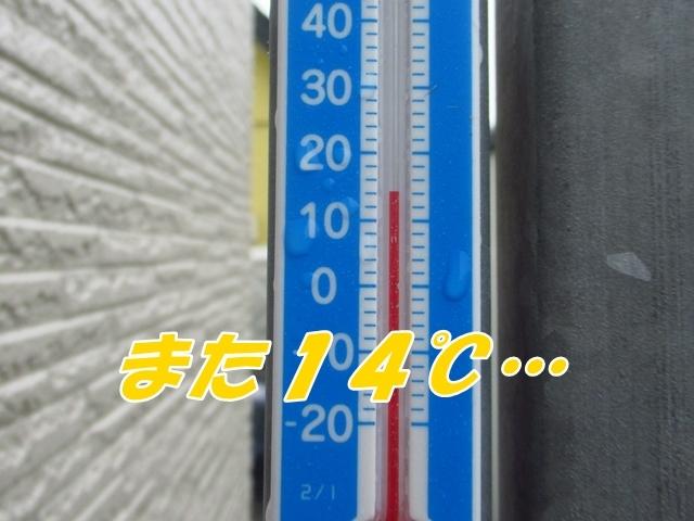 20210708IMG_0603.jpg