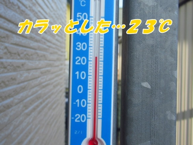 20210714IMG_1511.jpg