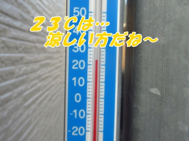 20210725IMG_3247.jpg