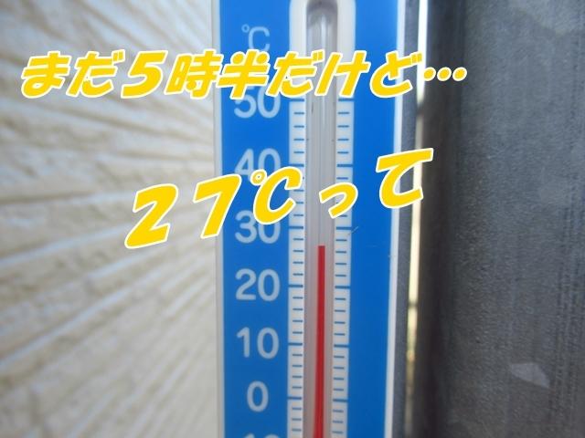 20210729IMG_3953.jpg