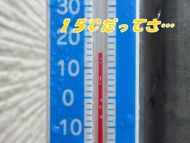 20210809IMG_5696.jpg