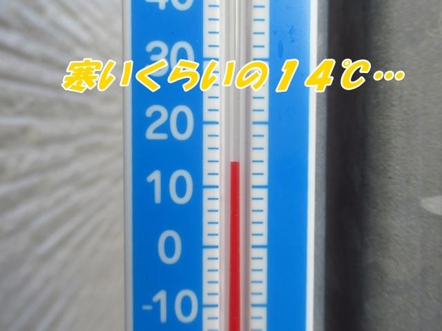 20210811IMG_5940.jpg