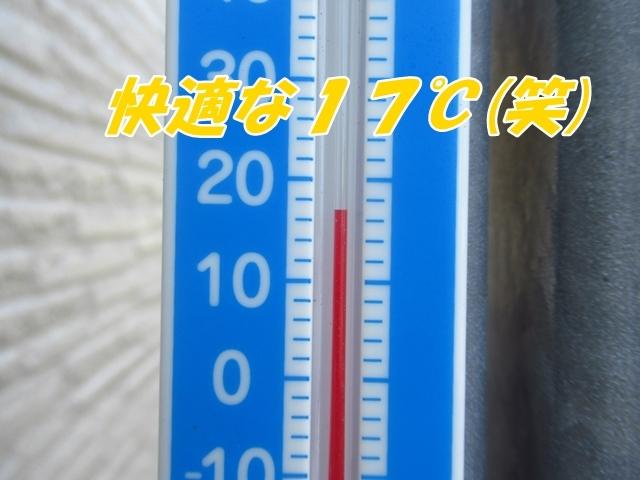 202108154.jpg