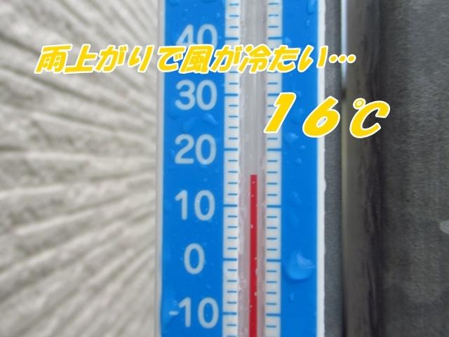 20210901IMG_9104.jpg