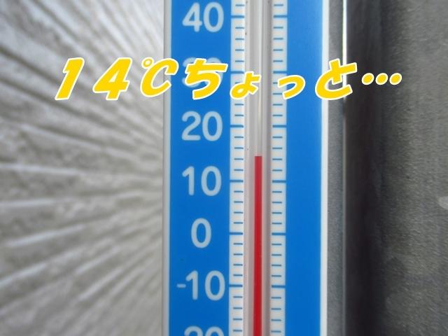 20210903IMG_9312.jpg