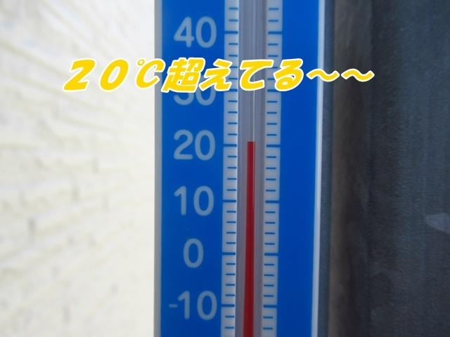 20210916IMG_1390.jpg