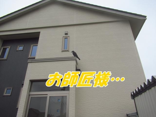 20210917IMG_1580.jpg