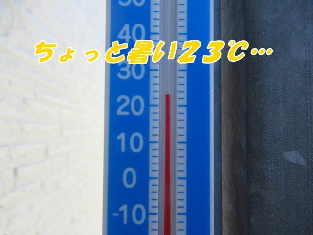 20210917IMG_1606.jpg