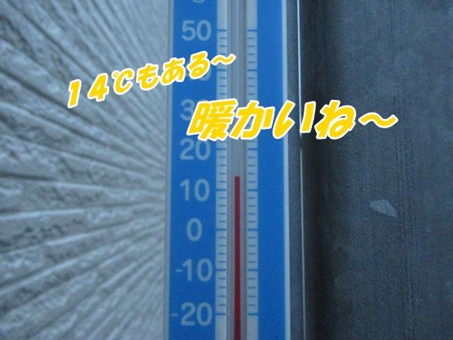 20211009IMG_5257.jpg