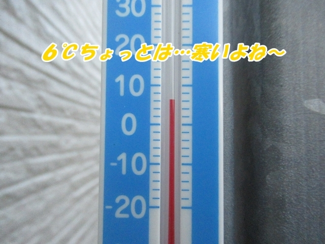 20211012IMG_5328.jpg