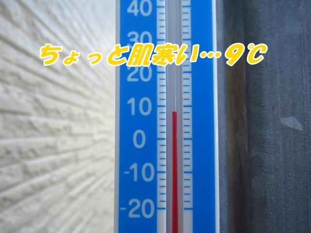20211023IMG_6855.jpg