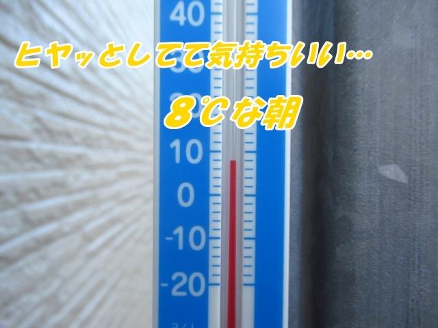 20211026IMG_7301.jpg