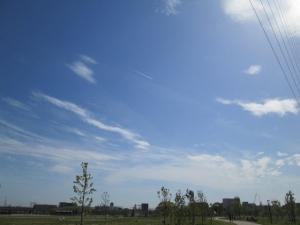 安満遺跡公園16 -9