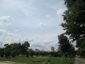 城跡公園18-1