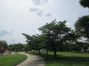 城跡公園18-3