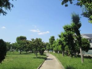 城跡公園19-2