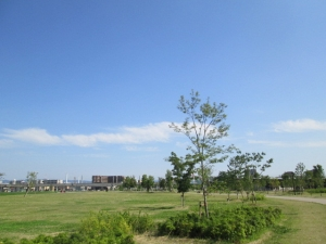 安満遺跡公園19-5