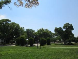 城跡公園19-6