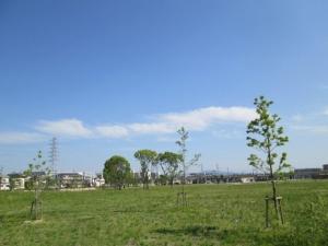 安満遺跡公園19-6