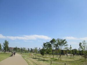 安満遺跡公園19-8