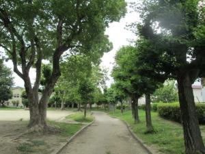 城跡公園20-3