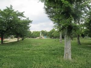 城跡公園20-4