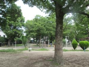 城跡公園20-7