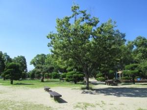 城跡公園21-10